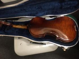 Back view of a Guldan 4/4 violin for sale at adamsmusic.com