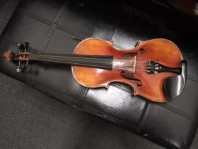 Front view of Prokop Violin for sale at adamsmusic.com