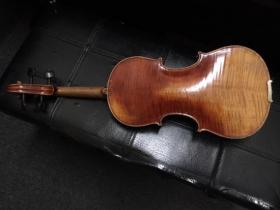 Back view of Prokop Violin for sale at adamsmusic.com