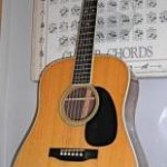 Martin D-35 Custom Guitar
