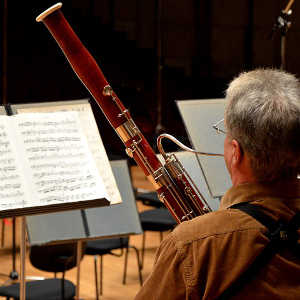 bassoon maintenance adams music