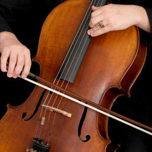 bowed string instrument maintenance adams music