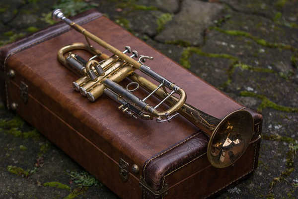 trumpet and case 600x400