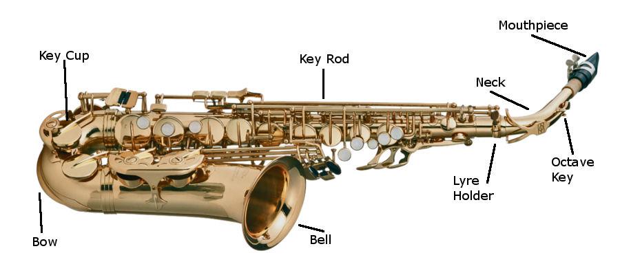 Saxophone Care Sheet Header