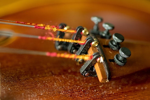 Bowed String Instrument Care - replace strings