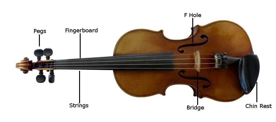Adams Music - Bowed Strings Care and Maintenance Header