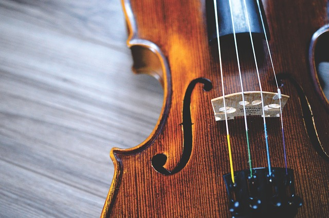 violin closeup with strings and f-hole