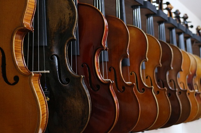 row of violins on a wall